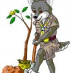 lupisori-merit-ecologist