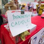 ordinul_cadoului_fermecat_2017_07_f